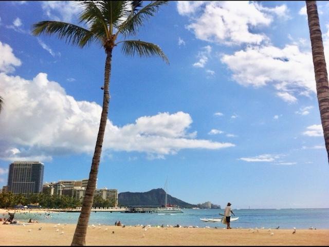 Aloha MK Tours